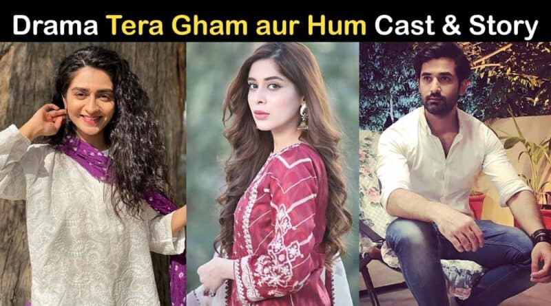 tera gham aur hum drama cast