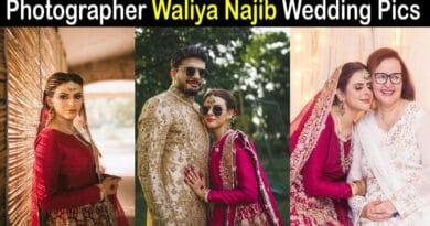 waliya najib wedding pictures