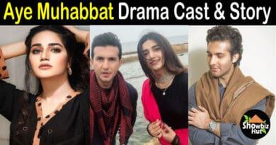 Aye Muhabbat Drama Cast