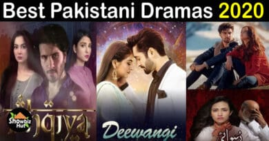 Best Pakistani Dramas 2020