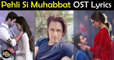 Pehli Si Muhabbat OST Lyrics