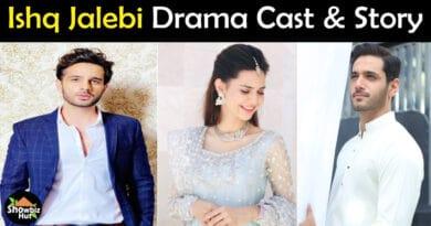 Ishq Jalebi drama cast