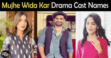 Mujhe Wida KAr drama cast
