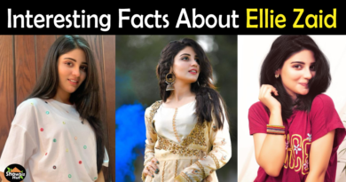 Ellie Zaid Biography