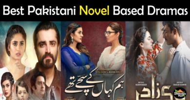 Pakistani dramas based on novels