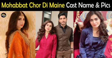 Mohabbat Chor Di Maine drama cast name