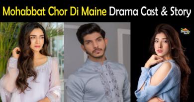 Mohabbat Chor Di Maine drama cast