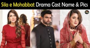 Sila e Mohabbat Drama Cast Real Name & Pics, Hum TV