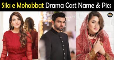 Sila e Mohabbat drama cast name