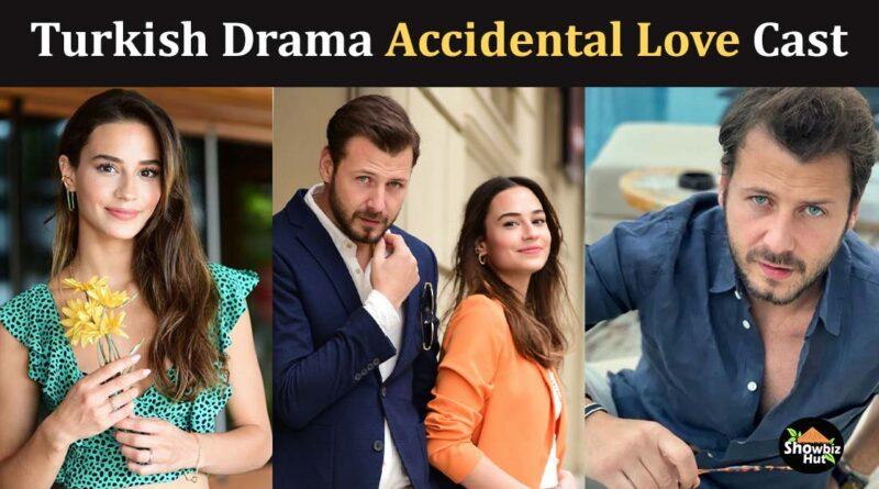 accidental love turkish drama cast